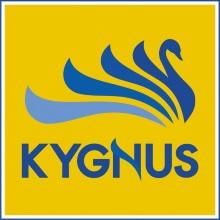キグナス石油